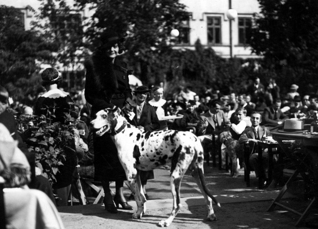 sierpień w Warszawie